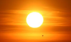 Sun-Survey-Has-Disturbing-Implications-for-America