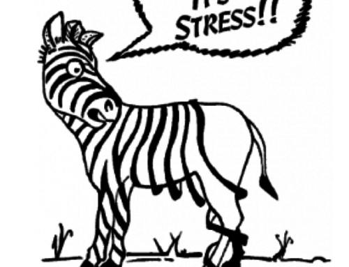 How Stress Ties Into All Health Issues